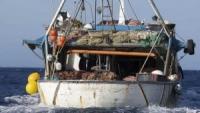 Pesca/Marche: Garantita continuità a sgravi contributivi – Grazie a Ministri Agricoltura e Lavoro