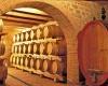 Ocm vino, oltre 3 milioni di euro per sostenere investimenti delle imprese vitivinicole umbre
